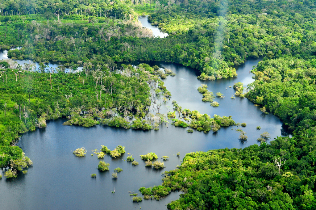 Photo of Brazilian Amazon near Manaus by Neil Palmer | CIFOR