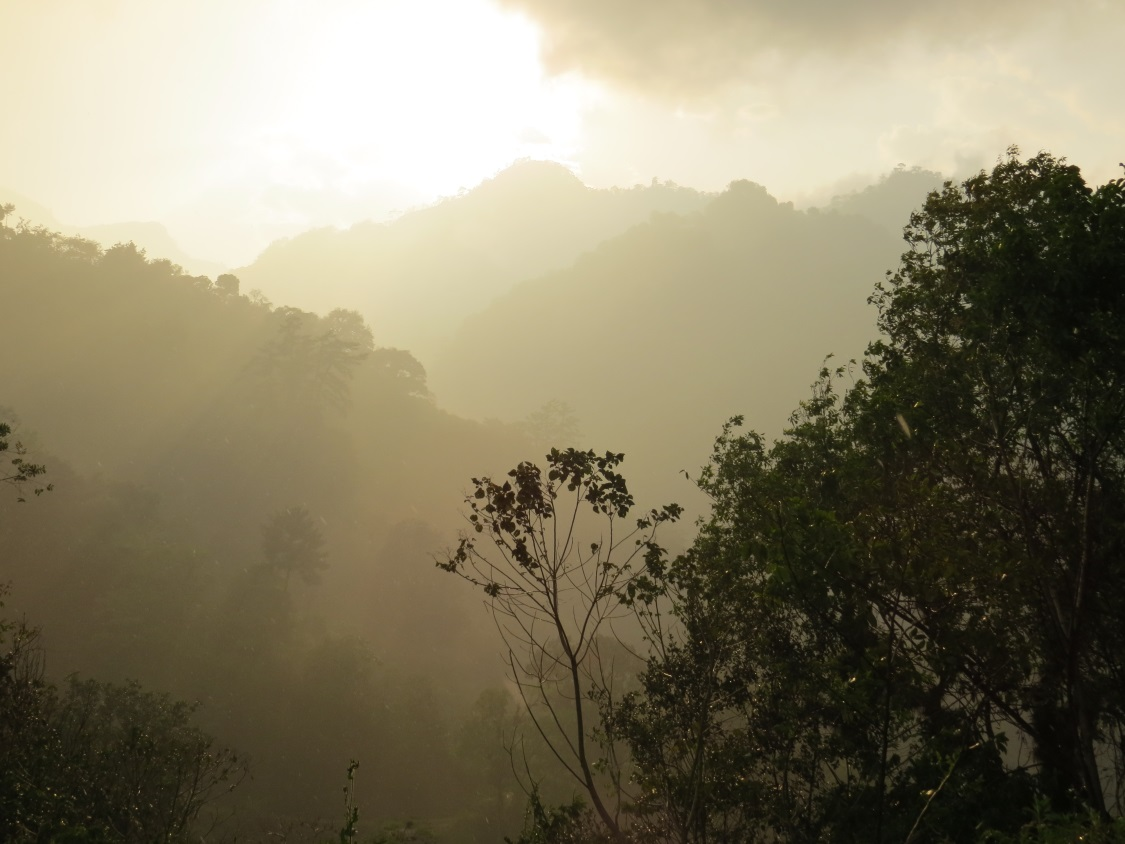 The famed cloud forests of Veracruz.