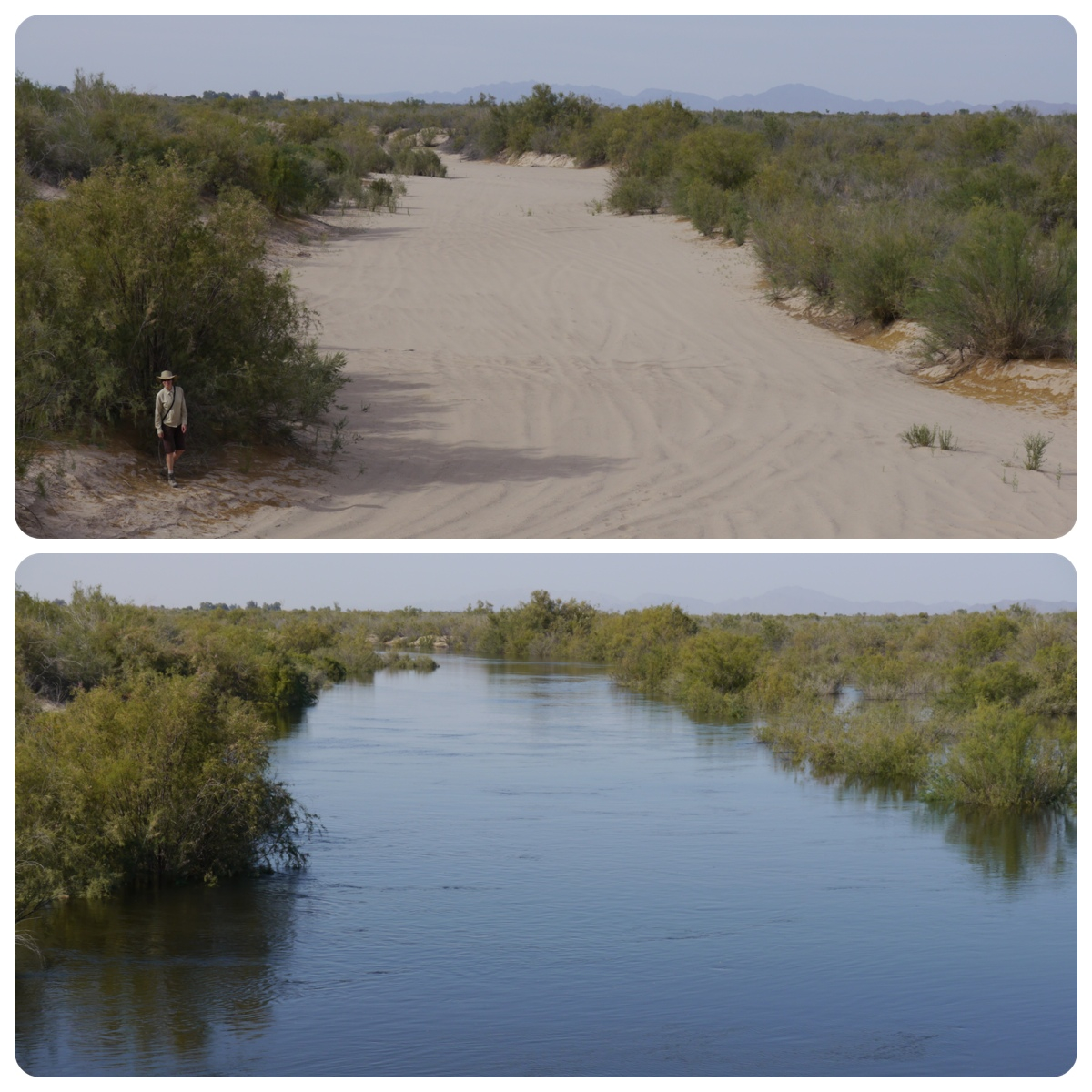 Before and After photo of Colorado River Delta | Photo by The Nature Conservancy