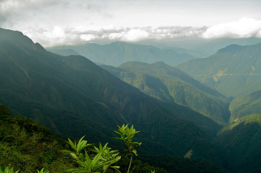 The Bolivian Yungas is a breathtakingly unique ecoregion within the 30 million acres NatureServe analyzed as part of the groundwork for the Critical Ecosystem Partnership Fund's five-year investment strategy in the tropical Andes. | Photo by Bruce Young, NatureServe