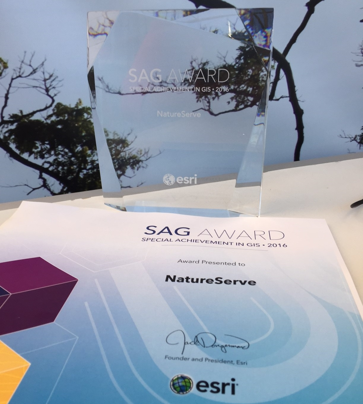 Esri Special Achievement in GIS (SAG) Award