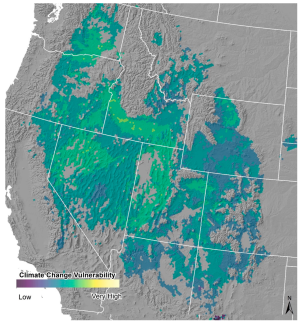 Overall climate Change Vulnerability estimate for 2040-2070 for Intermountain Basins Big Sagebrush Shrubland.