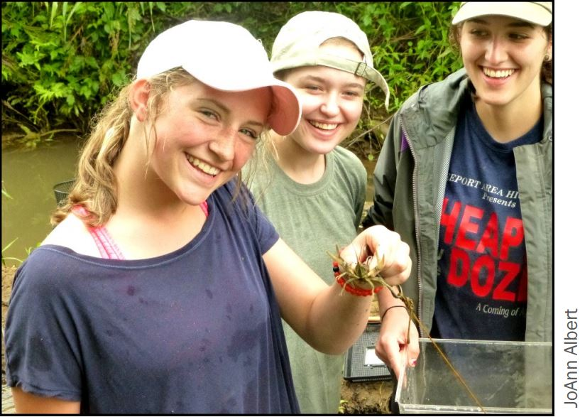 Campers measure the crayfish population of a stream segment, to note impacts from a beaver dam