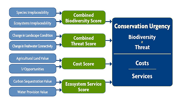 Prioritization framework incorporating conservation value, threats, and costs and benefits of conservation.