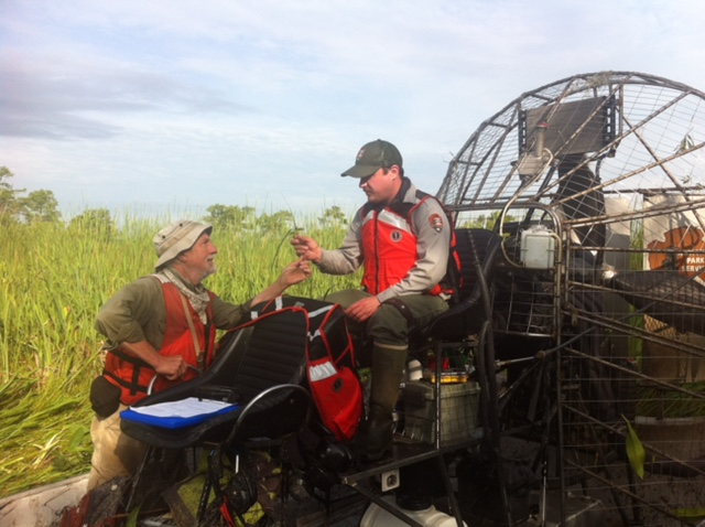 Milo Pyne (NatureServe) and Dusty Pate (NPS) of USGS Upper Midwest Environmental Sciences Center access remote areas of the park by airboat | Photo by Rickie White