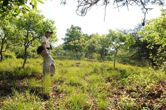 Chris Ludwig, Chief Biologist for the Virginia Natural Heritage Program, walks along a protected site in Virginia