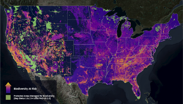 This map displays richness of at-risk species outside of existing protected areas using modeled distributions for 2,216 of the most imperiled plants and animals in the United States. Brighter colors indicate where land and water protection will most benefit the least protected yet most threatened biodiversity in our nation.