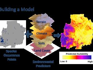 Species Distribution Modeling | NatureServe