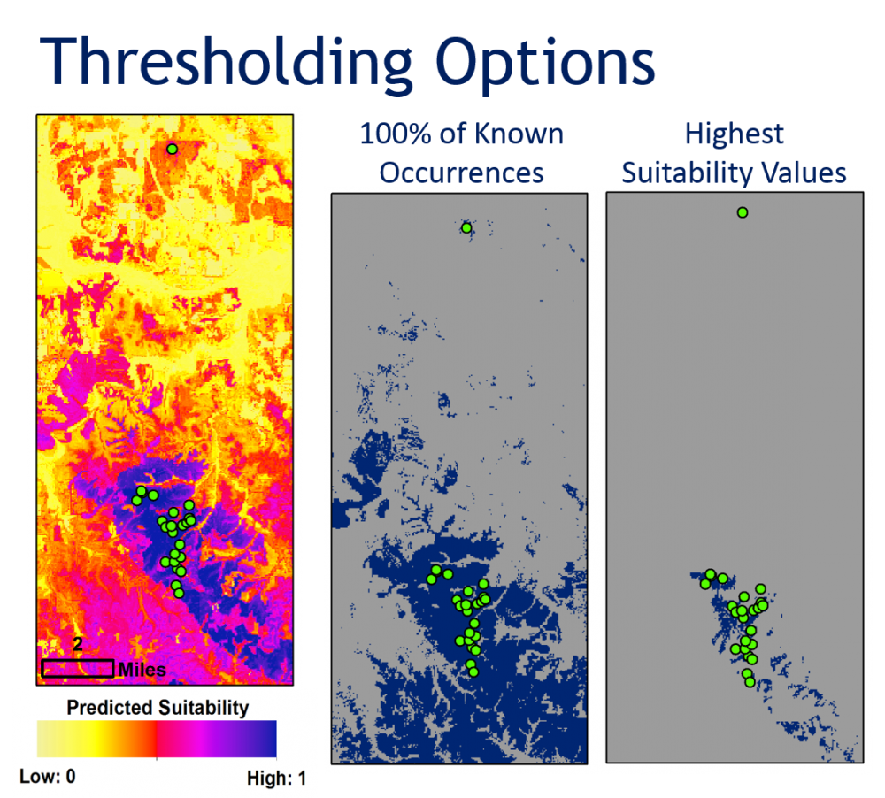 Model thresholds can be used to tailor HSM products to management risk tolerance. At center, habitat is mapped using a conservative threshold that captures all known species occurrences (green dots) – an approach suited to applications that emphasize protection, such as in the ESA consultation process. At right, a threshold is chosen to identify areas with the highest predicted suitability – an approach useful for guiding search for new populations or identifying candidate areas for conservation projects.