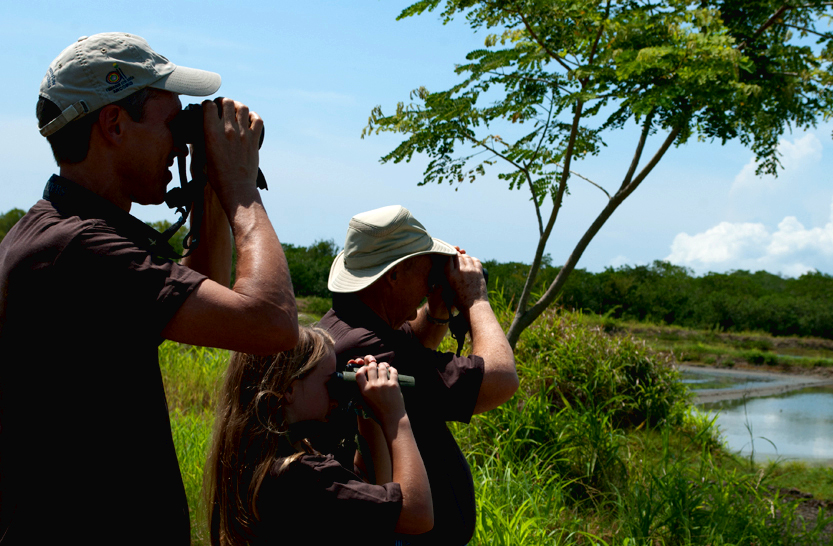 Bruce Young (at left) looks for shorebirds at La Ensenada National Wildlife Refuge in Costa Rica in 2012 | Photo by Julio E. Sanchez